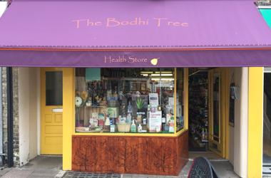 Our Bury St Edmunds, The Bodhi Tree, Bury St Edmunds.